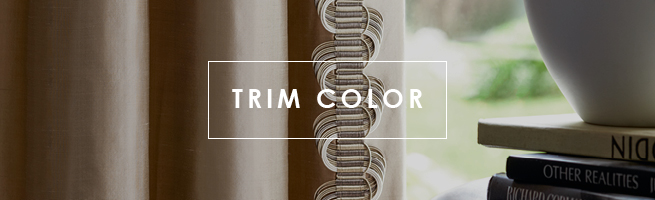 Shop Trim Color