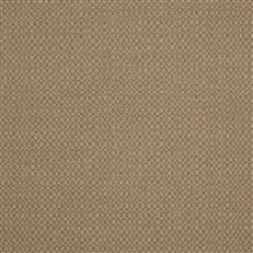 Action - Sunbrella Outdoor - Taupe